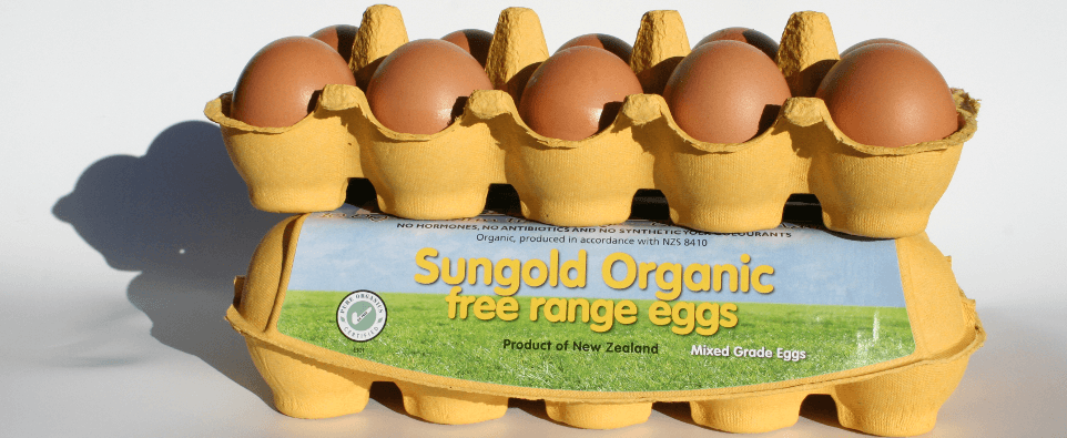 Sungold staff with eggs and hens